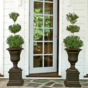exterior-door-potted-topiaries-l
